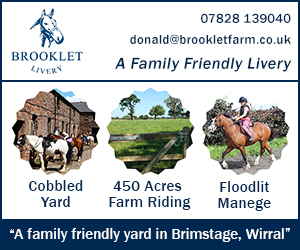 Brooklet Livery 24 (Cheshire Horse)