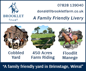 Brooklet Livery 23 (Cheshire Horse)