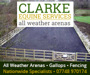 Clarke Equine Services  2019 (Cheshire Horse)