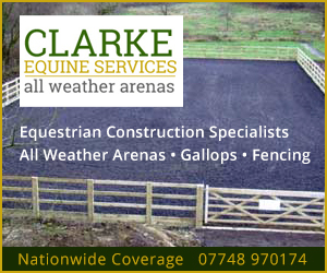 Clarke Equine Services  2020 (Cheshire Horse)