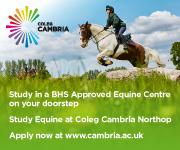 Coleg Cambria 11 (Cheshire Horse)