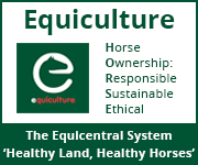 Equiculture 01 (Cheshire Horse)