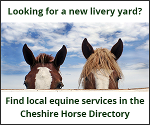 Livery Yards (Cheshire Horse)