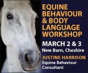 Justine Harrison Workshop March 2019 (Cheshire Horse)
