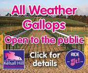 Kelsall Hill Gallops (Cheshire Horse)
