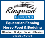 Ringwood Fencing 2 (Cheshire Horse)