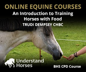 UH - An Introduction To Training Horses With Food (Cheshire Horse)