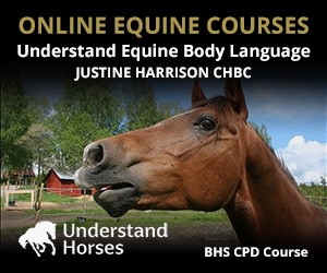 UH - Understand Equine Body Language (Cheshire Horse)