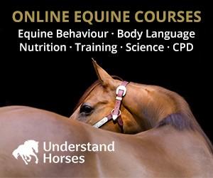 Understand Horses (Cheshire Horse)