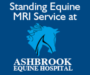 Ashbrook Equine Hospital 6d (Cheshire Horse)